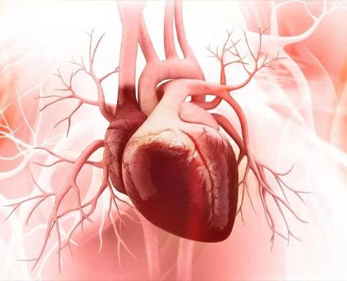 بیماری نارسایی قلبی